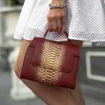 Екстравагантні сумки з натуральної шкіри пітона, брендові моделі
